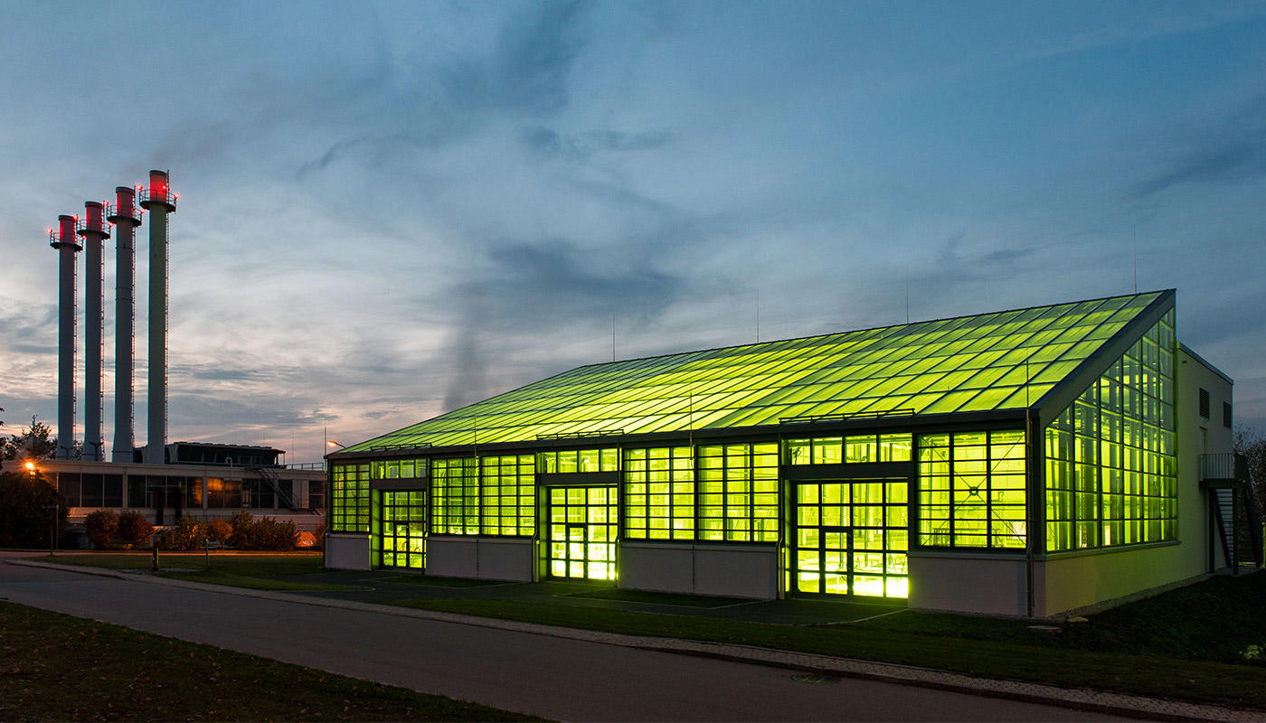 Take-off with algae in the tank - Munich Airport